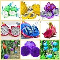 50pcs / bag raras 9 tipos de semillas de pitaya, muy bonito semillas de frutas dragón semillas de frutas mezcla