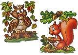 Unbekannt 3 Stück: XL Fensterbilder Herbst - Eichhörnchen / Eule / Igel / Vogelscheuche - Sticker Fenstersticker / Aufkleber selbstklebend & statisch haftend - Fensterb..