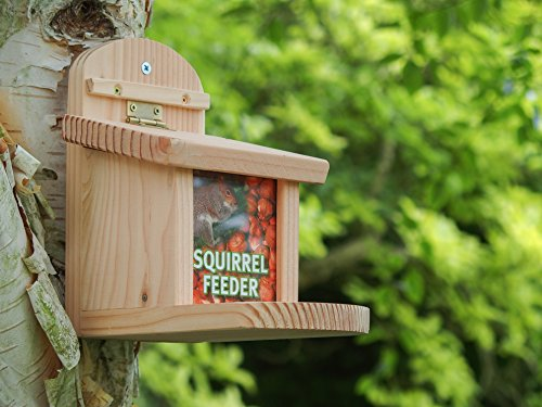 The Wildlife World Squirrel Feeder is one convenient feeder that comes in handy if you are having trouble with squirrels in your garden. It has been well designed, and the price is also very affordable.