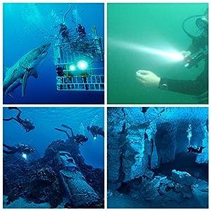 TurnRaise 1200LM Tauchen Taschenlampe Unterwasser 100m wasserdicht Submarine Licht von TurnRaise - Outdoor Shop