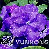 Bloom Green Co. Venta caliente 20 Unids a Bag Raro Azul Profundo Brunfelsia Bonsai Orquideas Para Plantar Bonsai Decoración Jardín Las Vegas De Fleurs Nuevo
