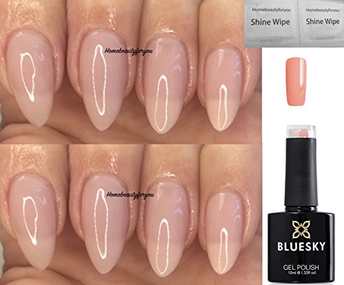 Bluesky Nude Zone Sheer Nude Beige Brand New Summer 2018 Colour Nail