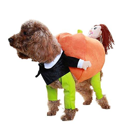 Kiao Halloween Kostüm Samt Warme Gut Lustiger Mann Tragen Kürbis Interessant Design Für (Europäische Kostüm Für Männer)