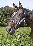 Kerbl Strick Führstrick Mustang Panikhaken, Royalblau/Schwarz/Weiß, 321438