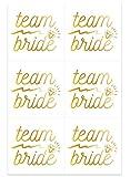 Top Qualität Hen Party Zubehör–Hen Party Dekoration Staubbeutel Spiele Kostüme, durch Lizzy Team Bride Temporary Tattoos x 6
