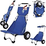 Ascan Beach BUGGY Surf BUGGY Transport Cart And Seat With Sun Roof by Ascan