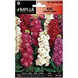 Semillas de Flores - Alhelí Excelsior gigante variado - Batlle