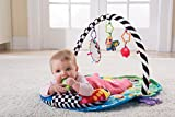 Enlarge toy image: Lamaze Freddie the Firefly Baby Gym Play Mat