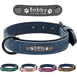Didog - Collar de piel suave acolchada personalizable para perro, chapa de nombre, anillo en D, collar grabado para perro, tamaños pequeño, mediano y grande