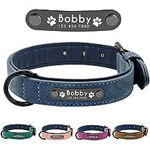 Didog - Collar de piel suave acolchada personalizable para perro, chapa de nombre, anillo
