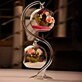 Hanging Glass Terrarium Air Plant Vase /Votive Holder Home Deco