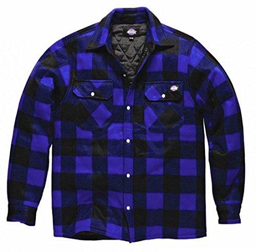 Dickies Holzfällerhemd Thermohemd Portland (M, Royalblau/schwarz)