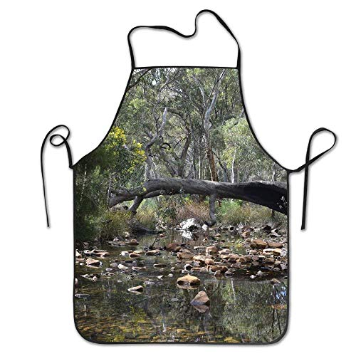 dhdhgdfj Schürzen Küchenschürze Creeks Water Mambray Creek Deluxe Aprons Personalized Printing Kitchen Apron Pink Cooking Grilling Apron for Women Men Unisex Kids Waitress Chef Funny White Black Barb