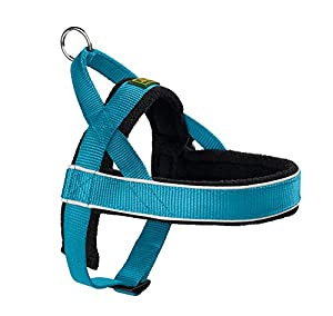 Hunter Racing Norweger Harness - Imbracatura Cane, Blu (Petrol Blue), M, Blu (Petrol Blue), M (52-62 cm)
