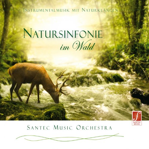 Symphony of Nature in the Forest (Natursinfonie im Wald) [Stimulating Feel-Good Music and Sounds of Nature]