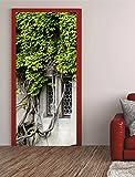 Türposter Fenster 100x200cm Türfolie Türtapete Bewachsen Wein Blatt 632tp