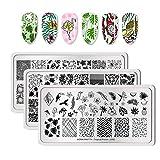 BORN PRETTY Rettangolo Nail Stamping Plate Frutta Pattern Nail Stamp Immagine Plate Tropical Punch 3 Pz fascio