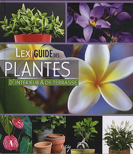 Lexiguide des plantes d'intérieur et de balcon