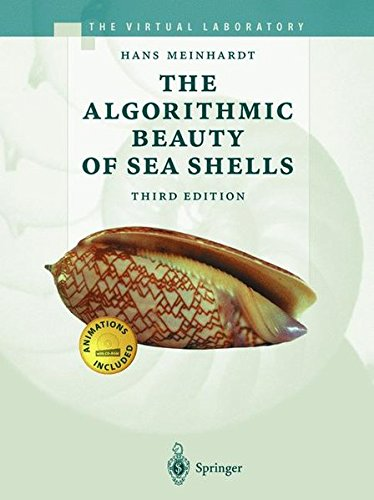 The Algorithmic Beauty of Sea Shells (The Virtual Laboratory) (Web-design-prozess)