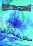 Delfin ~ Reisen | Im Fluss der Leichtigkeit des Seins | DVD & Audio-CD