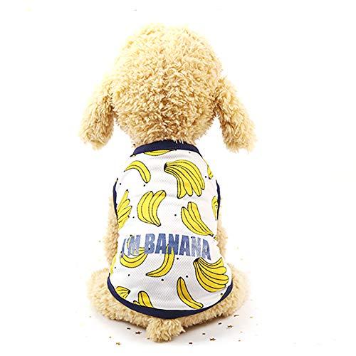 Trifycore 1Pc Hunde Banana Pattern Cute Pet-Hündchen-Sommer-Rock-Haustier-Kleid T-Shirt (Medium Size) Haustierkleidung, Tierbedarf für - Banana Rock Kostüm
