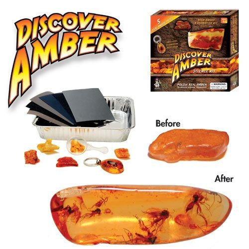 discover-amber-science-kit-polish-real-amber-in-search-of-ancient-bugs