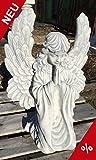 Engel kniend betend Flügel hoch 53cm Grabengel Steinguss Steinfigur Schutzengel + Original Pflegeanleitung von Steinfigurenwelt Giessen