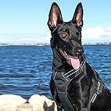 SCENEREAL CO. Hundegeschirr, groß, weich, reflektierend, gepolstert, mit Griff und Leine, verstellbar, einfache Kontrolle für kleine und mittelgroße Hunde