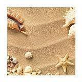 XiangHeFu Tischsets Strandmuscheln mit Sand 30,5 x 30,5 cm, hitzebeständig, Rutschfest für Esstisch, Polyester-Mischgewebe, Image 150, 12x12x4(in)