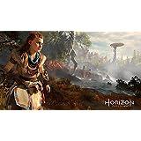Horizon : Zero Dawn - édition collector