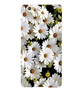 White Flower 3D Hard Polycarbonate Designer Back Case Cover for Gionee S6