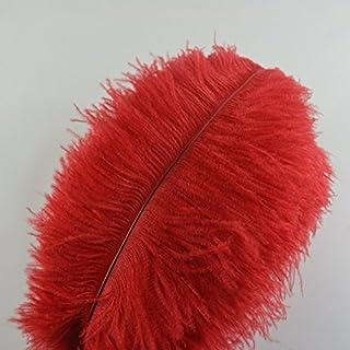 Lot de 10 plumes d'autruche Creny de 30 à 35 cm pour décoration d'intérieur ou mariage, Red