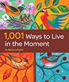 1,001 Ways to Live in the Moment by Barbara Ann Kipfer (2009-09-09)