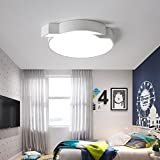 MOMO Einfache Moderne Led Dimmbare Acryl Schatten Hohe Transmission Eisen Schlafzimmer Lichter Wärme Romantische Kreative Kinder 'S Zimmer Lampen,Versprechen verdunkeln-60CM-39w