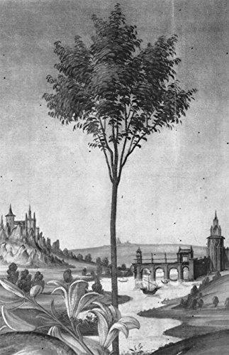 Vlies Fototapete Sandro Botticelli - Alte Meister - Landschaft - Detail Verkündigung - schwarz weiss - 100x155 cm - mit Kleister - Poster - Foto auf Tapete - Wandbild - Wandtapete - Vliestapete -