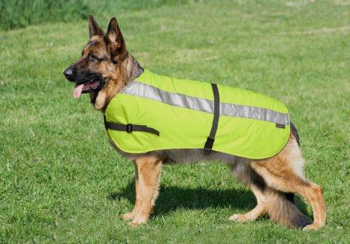 Petlife Warnweste für Hunde, mit warmem Thermofutter, 61 cm, fluoreszierendes Gelb