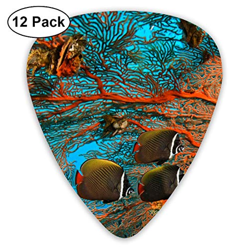 Coral Tropical Fish 351 Shape Classic Celluloid Guitar Pick For Electric Acoustic Mandolin Bass (12 Count) -