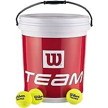 Wilson Trainer Tennis Balls