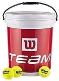 Wilson Tennisbälle, Trainer Tball, Eimer mit 72 Bällen, gelb, WRT131200