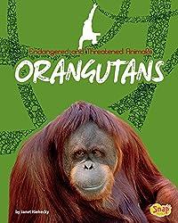Orangutans (Endangered and Threatened Animals)