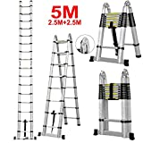 Vlio 5M Telescopic Ladder DIY Aluminum Alloy Folding Extendable Extension Ladder EN131 (Load Capacity 150kg)