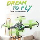 Cewaal Mini abejón gordo verde H48, Quadrocopter teledirigido con la función que rueda del modo sin cabeza 3D, juguetes del vuelo del helicóptero de bolsillo para los niños