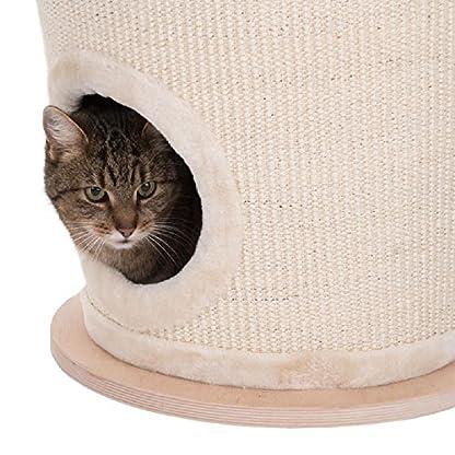 Unusual Cat Scratching Barrel 4