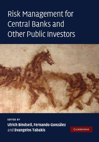 risk-management-for-central-banks-and-other-public-investors