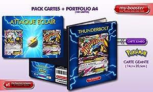 Cartes Pokemon Mega Metagross EX et Metagross EX + PORTFOLIO Mega Metagross EX XY format A4