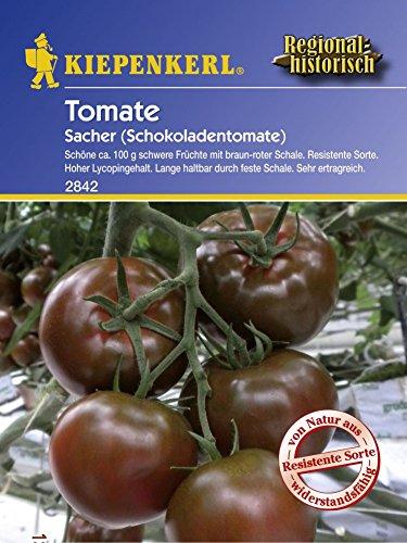 Tomatensamen - Tomate Sacher - Schokoladentomate von Kiepenkerl