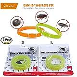 Handfly Floh- und Zeckenhalsband für kleine, mittlere und große Hunde & Katze wasserdicht Hundehalsband tötet Insekteneier 40/60cm (2pcs-B, Grün)