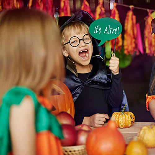 16 Piezas Gafas de Magos de Plástico Marco de Gafas Redondo sin Lentes para Materiales de Fiesta de Disfraces Halloween  Negro