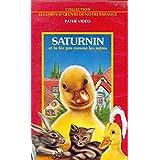 Saturnin et la fée pas comme les autres