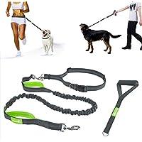 [Gesponsert]Jogging Hundeleine Freihandleinen für Hunde Leine elastisch von Pecute Reflektierende Elastische Nylonband mit verstellbarem Hüftgurt und Handgirff ideal für mittelgroße und große Hunde bis zu 1.5 m